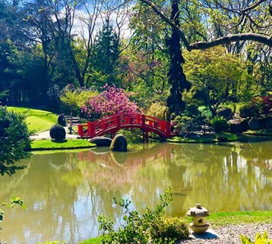 Visiter Toulouse, le jardin japonais